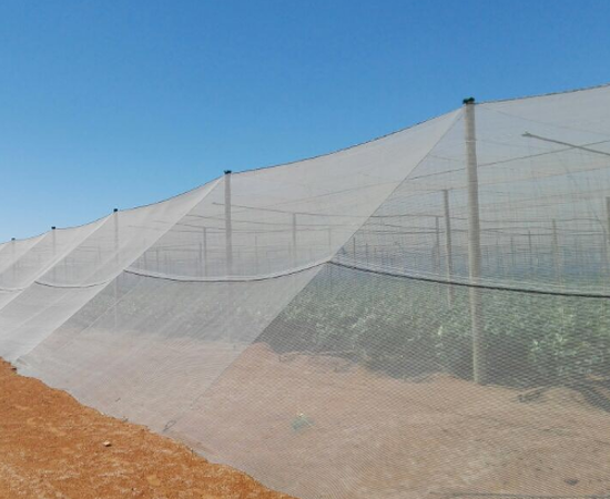 Agriculatural Nets